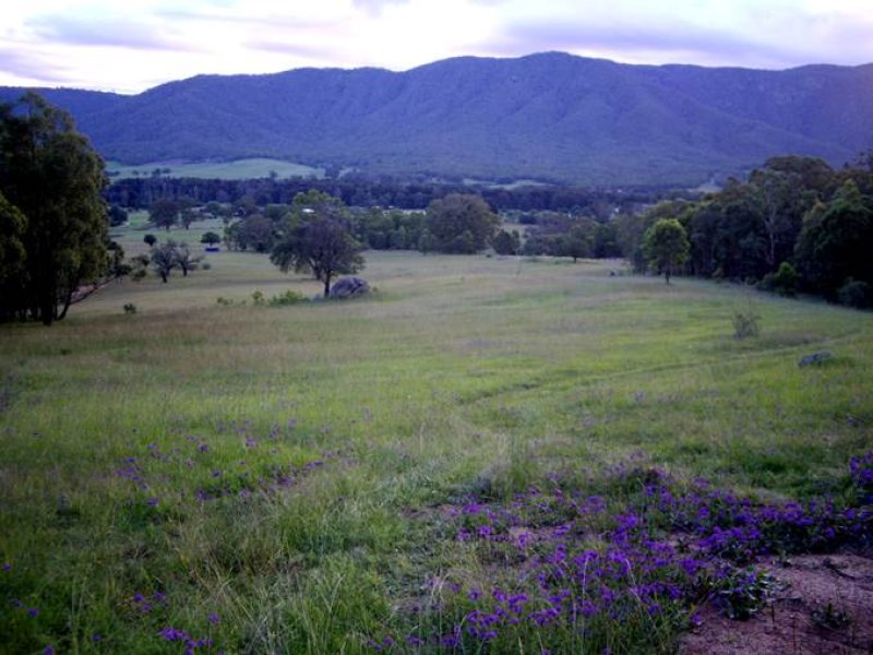 Lot 17 Naughtons Lane, Araluen, NSW 2622