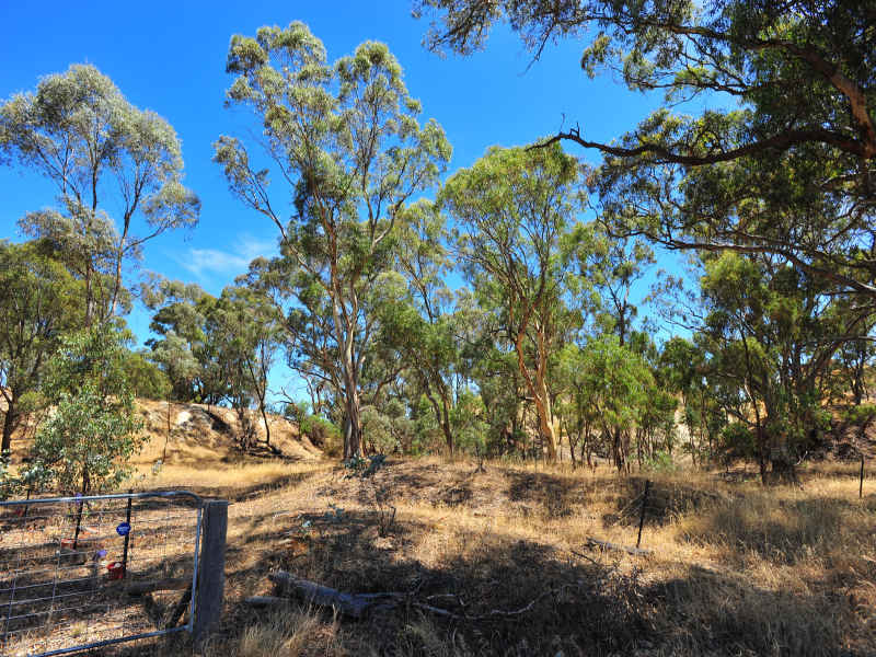 Lot 1, 312 Bet Bet Betley Road, Betley, Vic 3472
