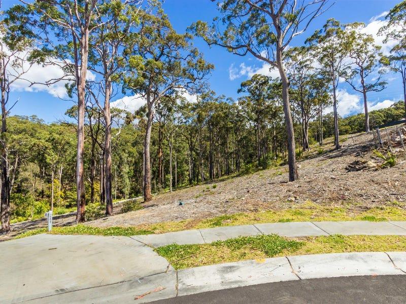 14 (Lot 4915) Falster Ridge, Cameron Park, NSW 2285