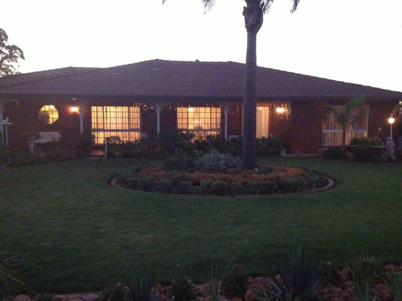 51 Blight Road, Nelshaby, SA 5540