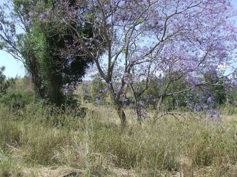 150ac Flagstone School Road, Toowoomba, Qld 4350