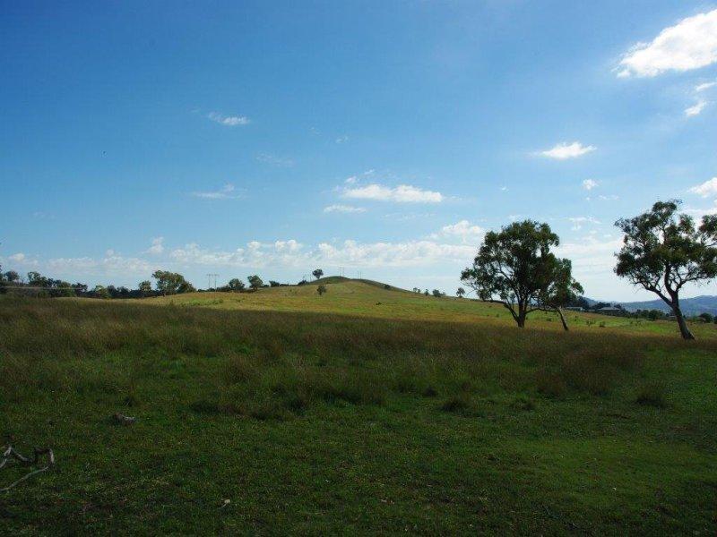 138 Tarrawingee Road, Mumbil, NSW 2820