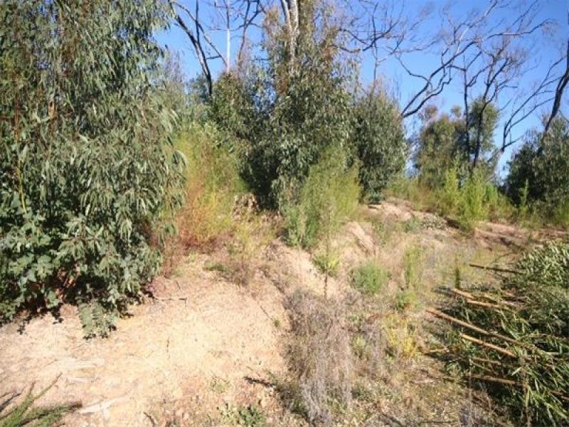 145 Old Kinglake Road, Steels Creek, Vic 3775