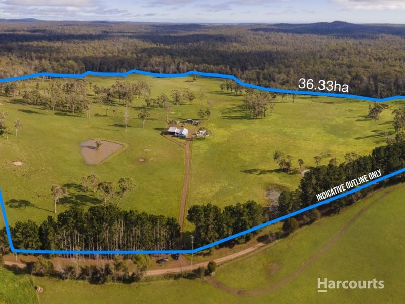 339 Back Creek Road, Pipers River, Tas 7252