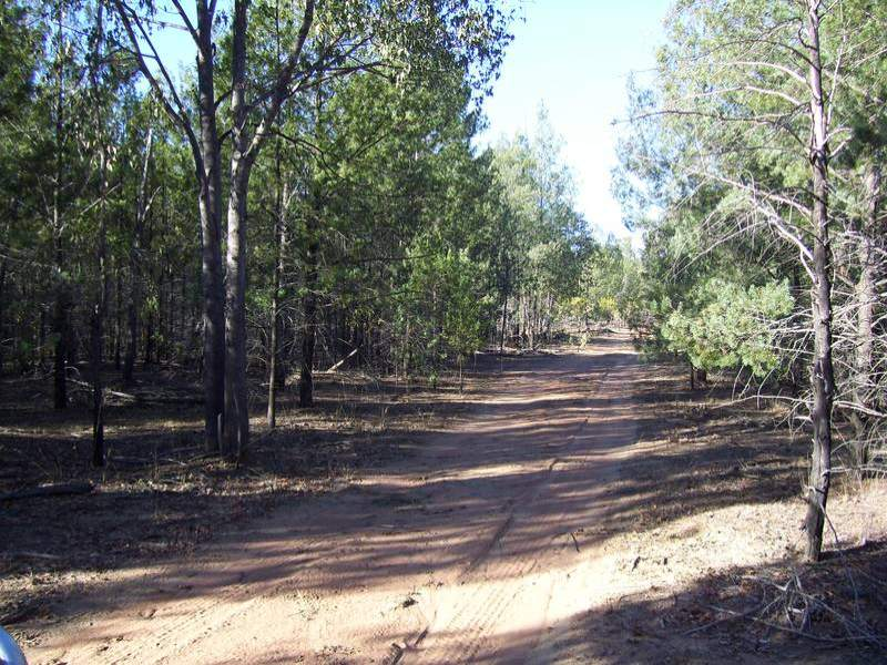 Welsh's Road, Wandoan, Qld 4419