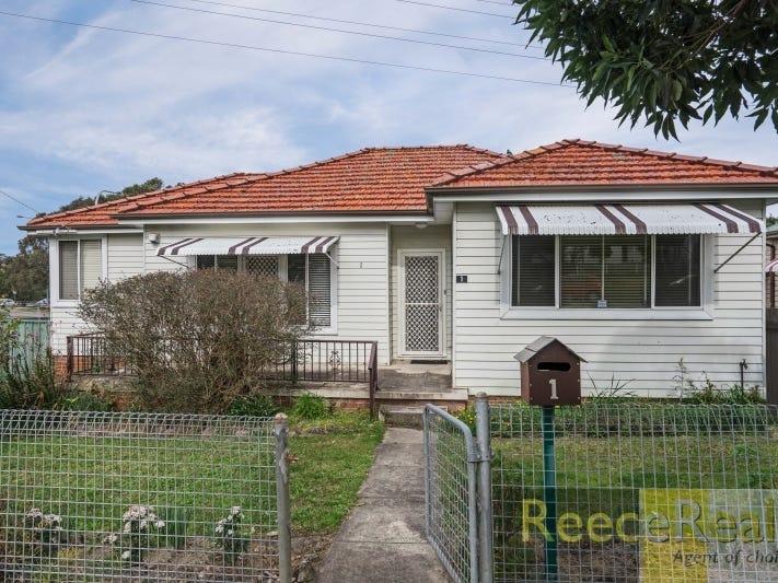 1 Wilkinson Avenue, Birmingham Gardens, NSW 2287
