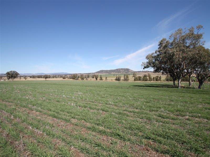 276 Spains Lane, Quirindi, NSW 2343