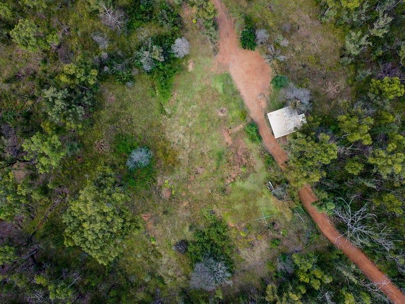 484 Glens Creek Road, Nymboida, NSW 2460