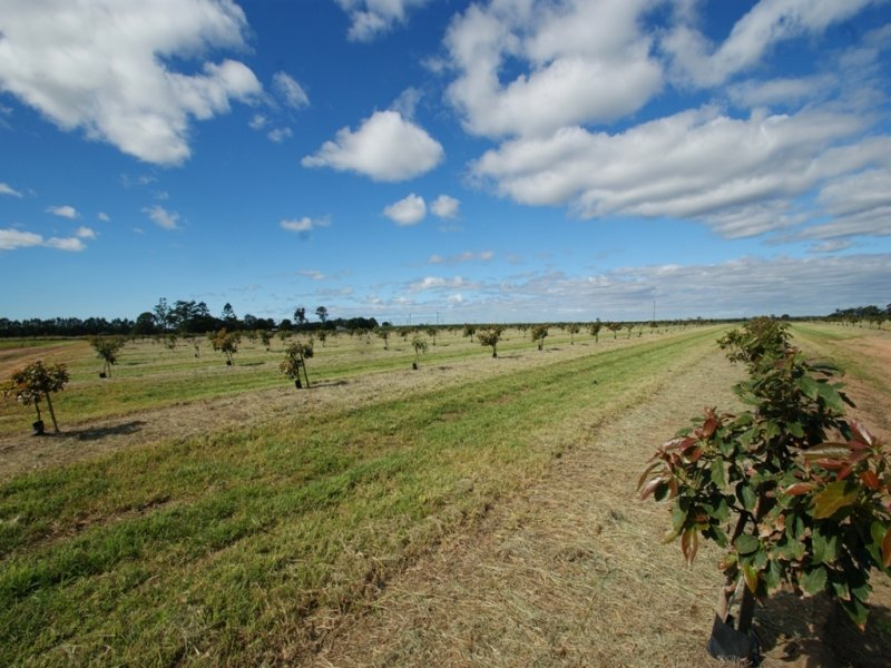 Goodwood Road, Kinkuna, Qld 4670