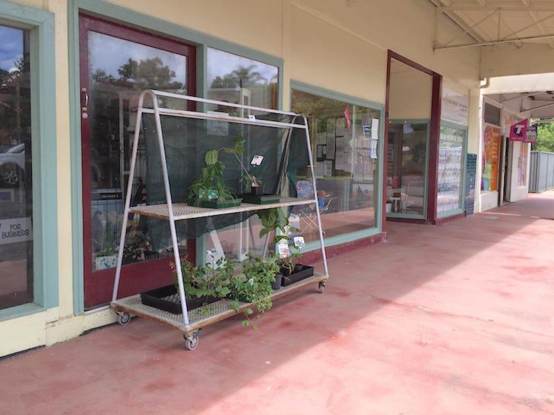 25 Sandilands Street, Bonalbo, NSW 2469