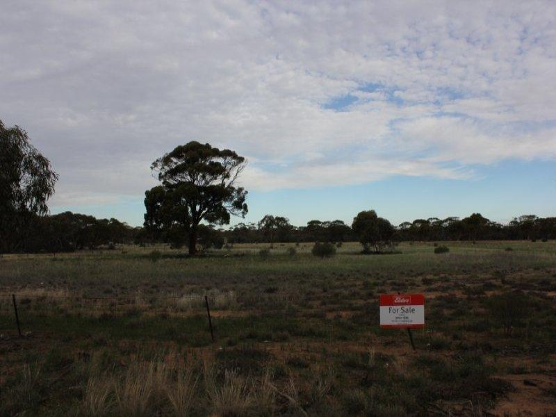Lot 125 Parkes Street, Burracoppin, WA 6421