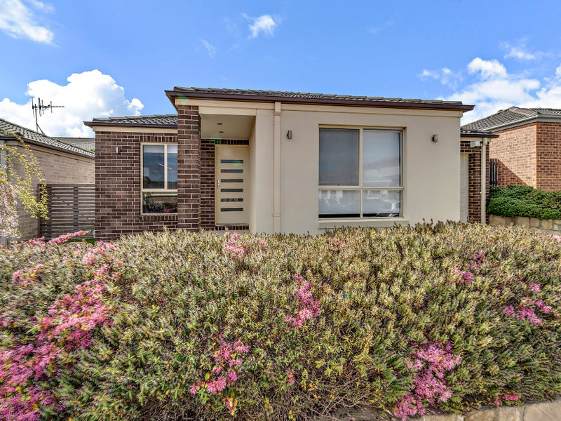 8 Hinde Street, Franklin, ACT 2913
