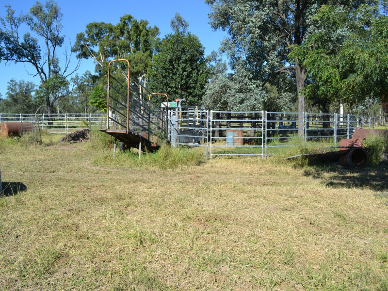 "54, ""The Joint"", Baralaba, Qld 4702"