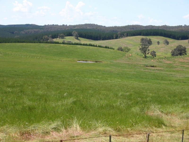 Bob's Creek Road, Carabost, NSW 2650