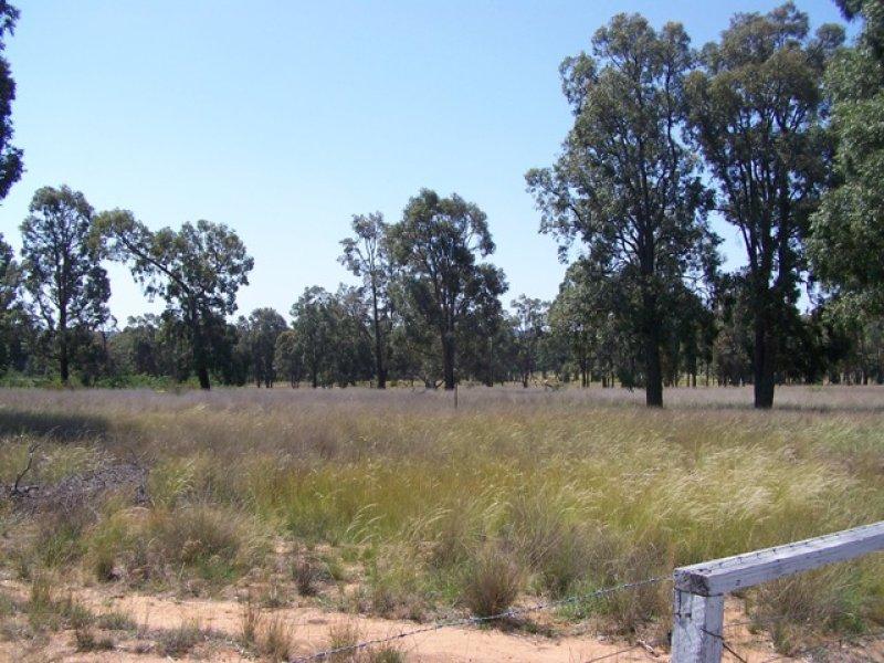 14L Wattle Road, Elong Elong, NSW 2831