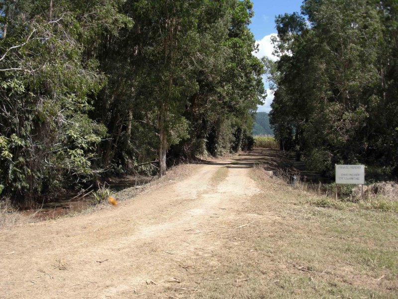 9, 154 Cape Tribulation Road, Mossman, Qld 4873