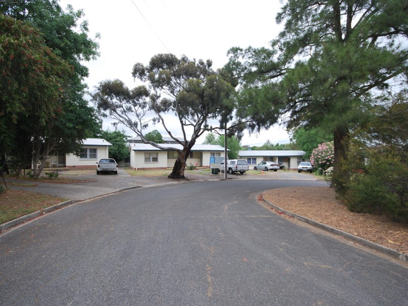 1 to 6/6 - 8 Olive Court, Magill, SA 5072