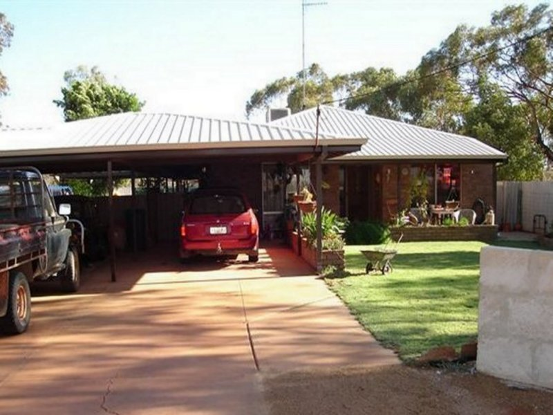 Lot 4 Carnamah Road, Perenjori, WA 6620