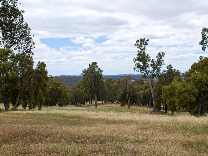 Lot 20 Great Eastern Highway, Beechina, WA 6556