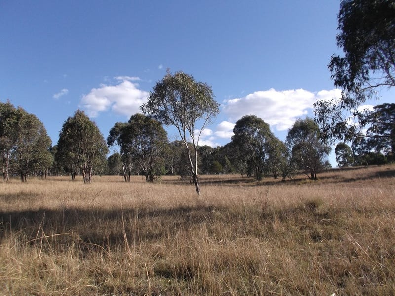 Lot 37 Mount Lindesay Road, Liston, NSW 2372