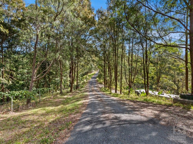 895 Limpinwood Road, Limpinwood, NSW 2484