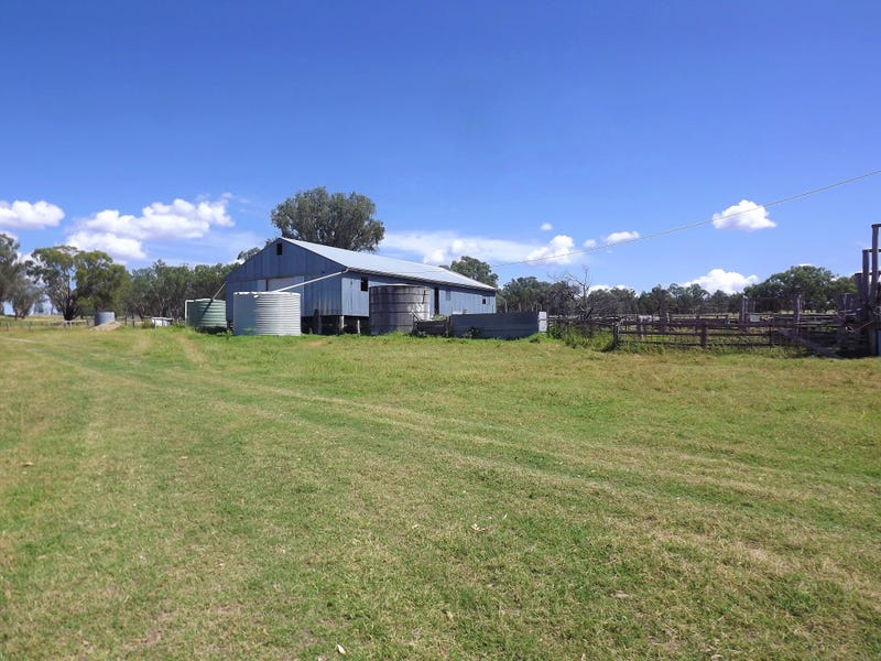729 Wallangra Road, Ashford, NSW 2361