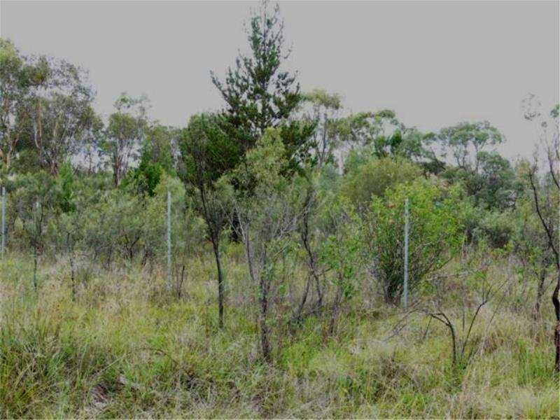 Lots 117 & 118 Calvert rd, Glen Aplin, Qld 4381