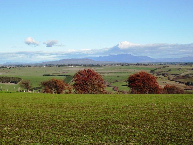 195 White Hills Road, White Hills, Tas 7258