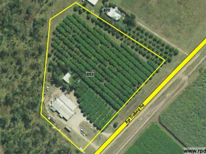 892 Ayr Dalbeg Road Mount Kelly Qld 4807 Horticulture