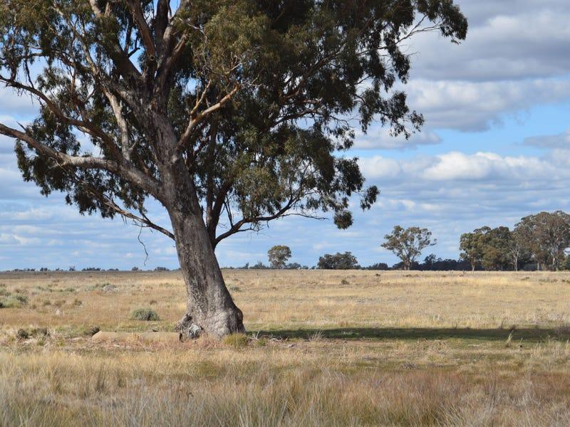 'Lexden', 66 Riverview Road, Gilgandra, NSW 2827