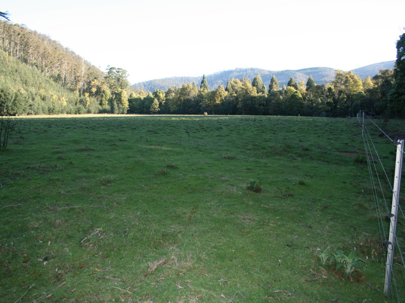 Address available on request, Nabowla, Tas 7260