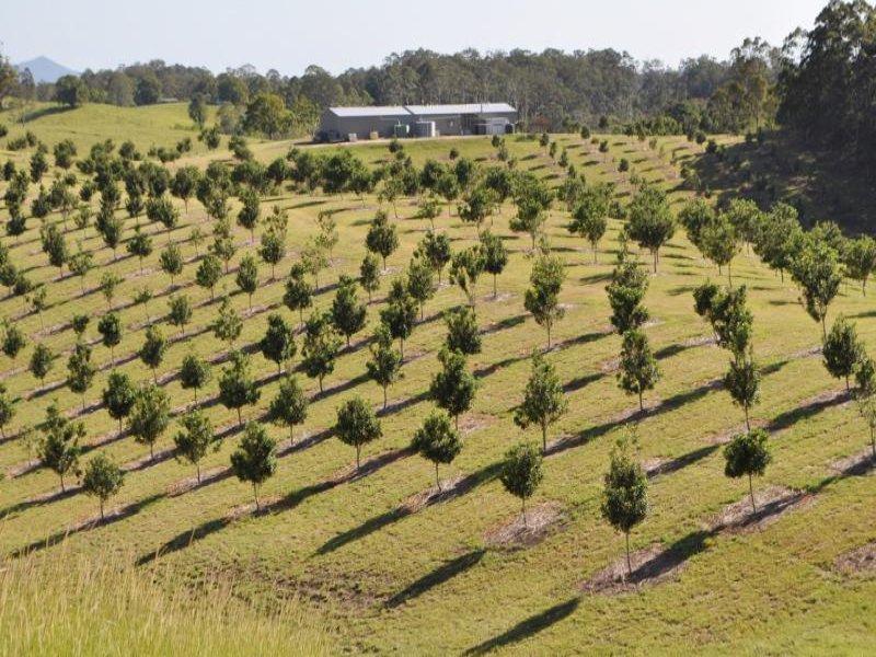 336 Congarinni Road South, Macksville, NSW 2447