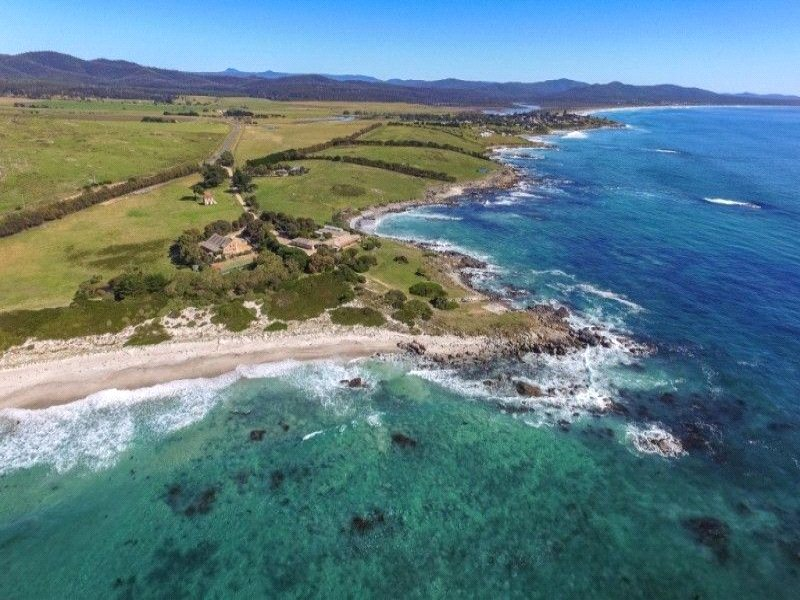 22352 Tasman Highway, Falmouth, Tas 7215