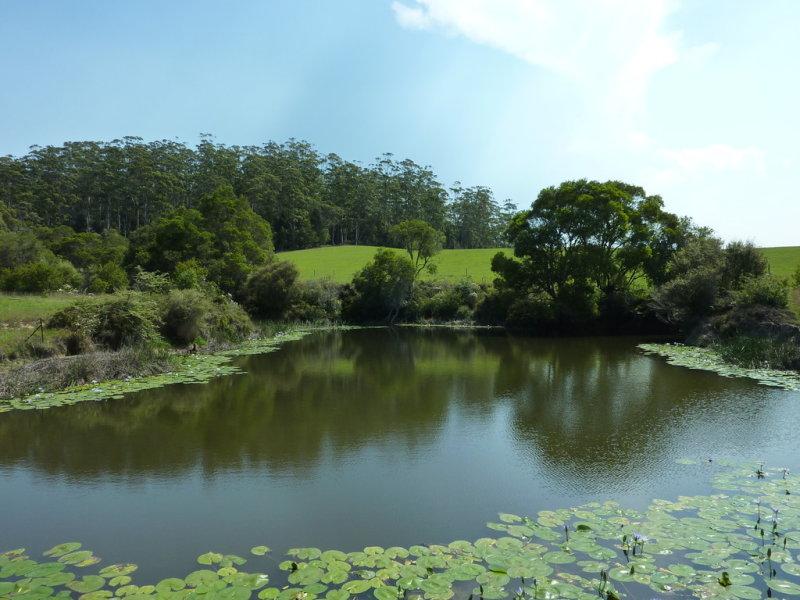 1590a Eastern Dorrigo Way, Lowanna, NSW 2450