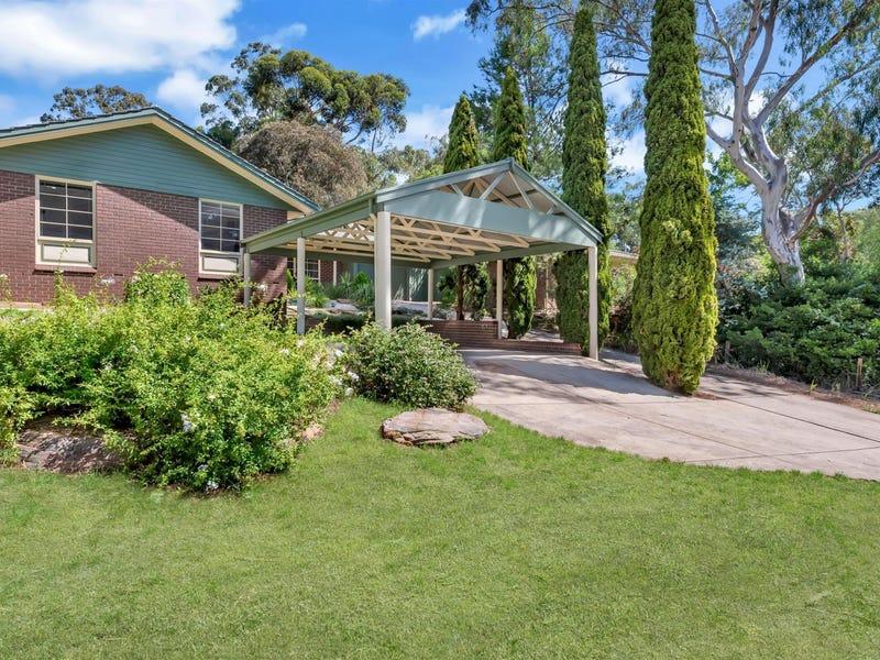 647 Milne Road, Tea Tree Gully, SA 5091