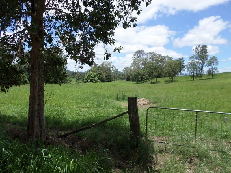 Lot 1 Pagdens Road, Owens Creek, Qld 4741