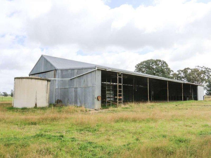 RMB 245 Merri Merric Lane, Henty, NSW 2658