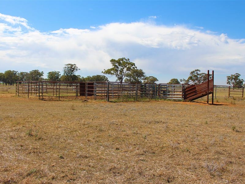 Address available on request, Narromine, NSW 2821