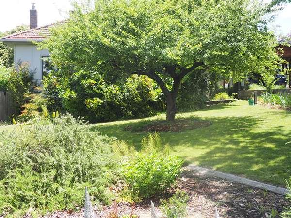 31 Uralla Street, Uralla, NSW 2358