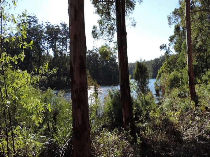 Lot 92, Karri Lane, Quinninup, WA 6258