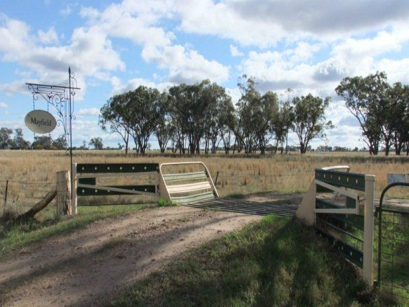 1621 Kelvin Road, Gunnedah, NSW 2380