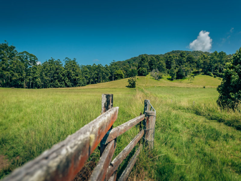 1620 Kalang Road, Bellingen, NSW 2454
