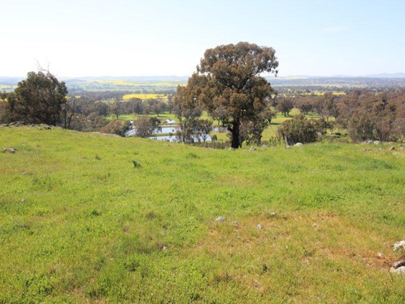 5, 94 Old Cootamundra Road, Cootamundra, NSW 2590
