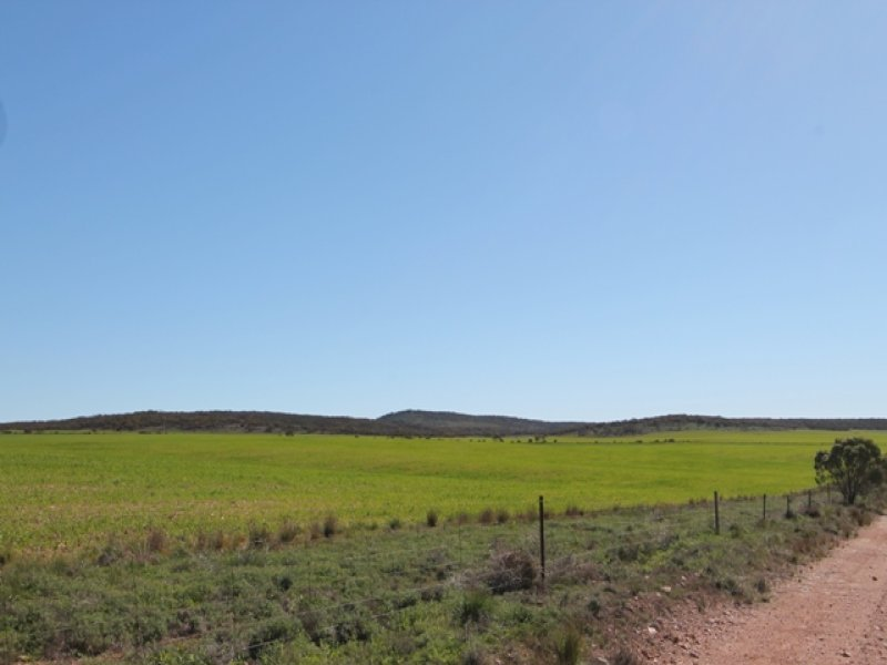 18 Sections Hundred of Minbrie, Cowell, SA 5602