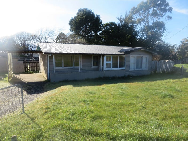 16 Counsel, Zeehan