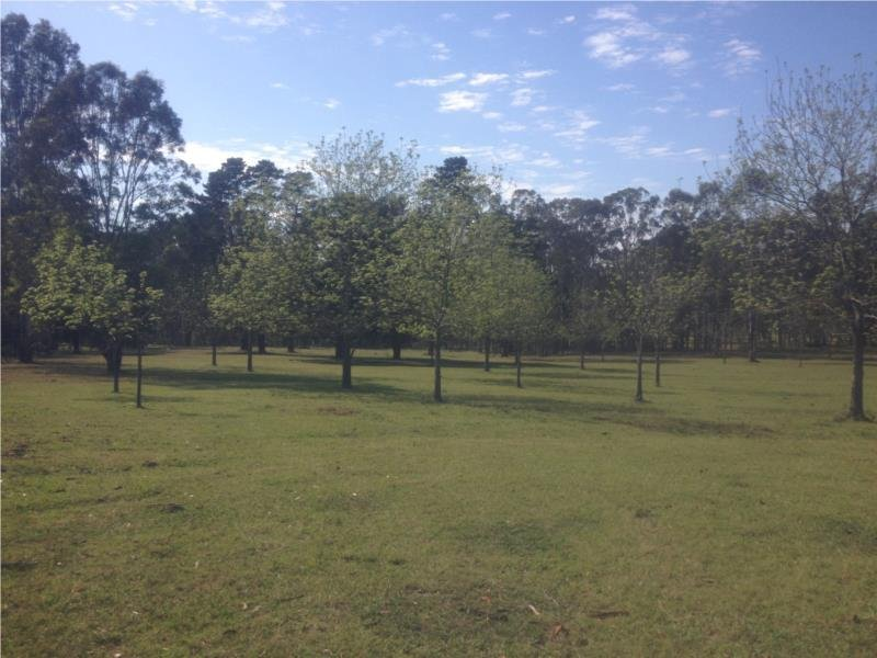 Lot 221 Old Maitland Road, Sawyers Gully, NSW 2326