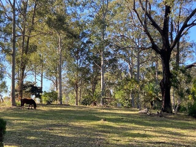 133 Armidale Road, Yarravel, NSW 2440