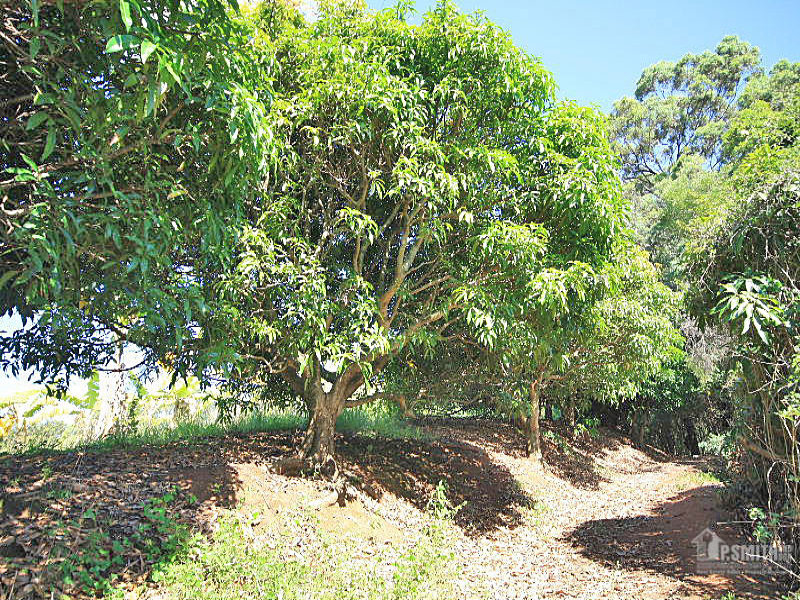 Lot 1 Geles Road, Upper Burringbar, NSW 2483
