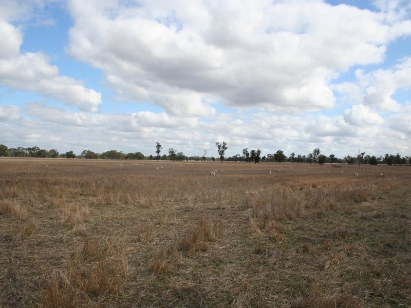 Address available on request, Clear Lake, Vic 3409