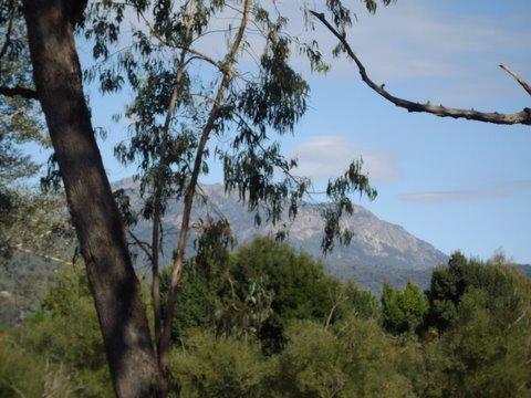 6930 Great Alpine Rd, Porepunkah, Vic 3740
